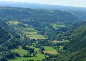 cormier-paysage