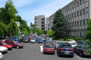 meconemefragile-parking