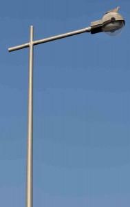 tourterelle-turque-lampadaire