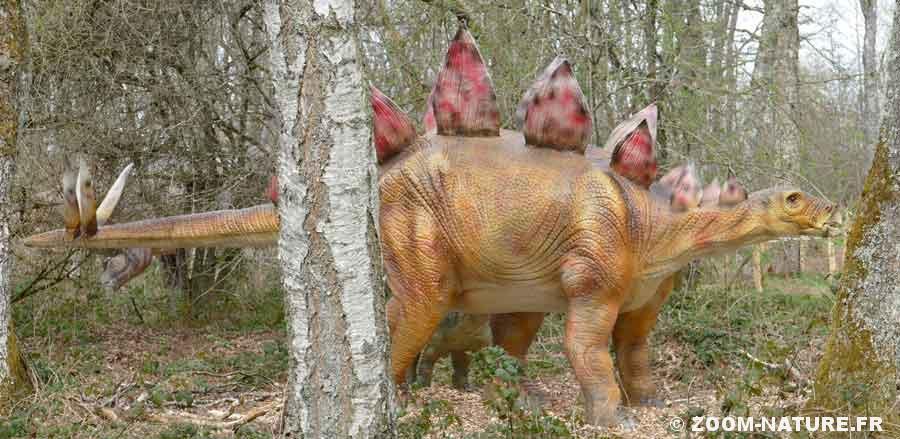 dinosp-stegosaurepano