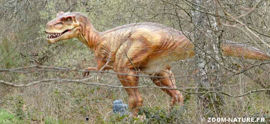 dinow-allosaurepano