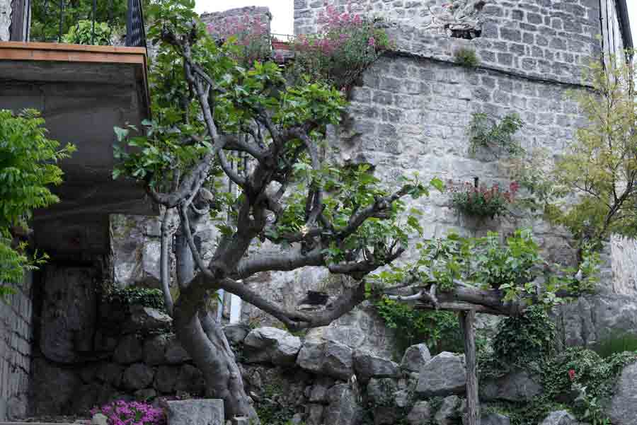 murs-balazuc